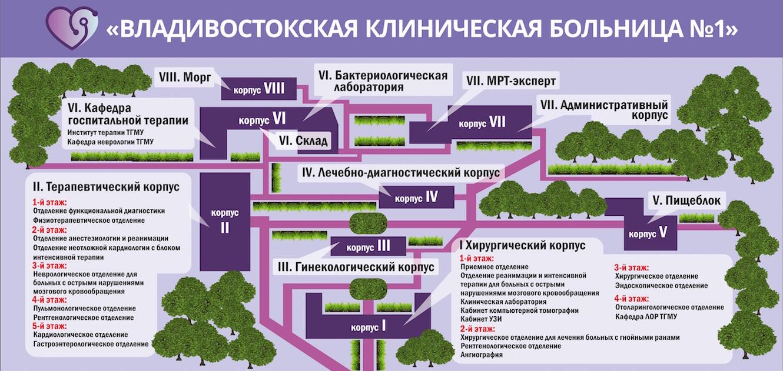 Схема корпусов КГБУЗ ВКБ №1